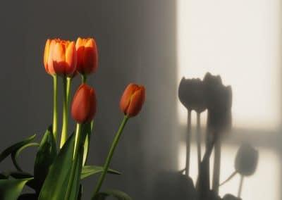 Mindfulness Fotografie